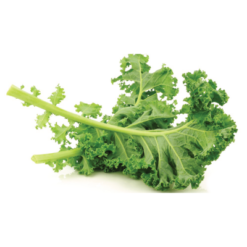 Cải Kale YF (500gr)