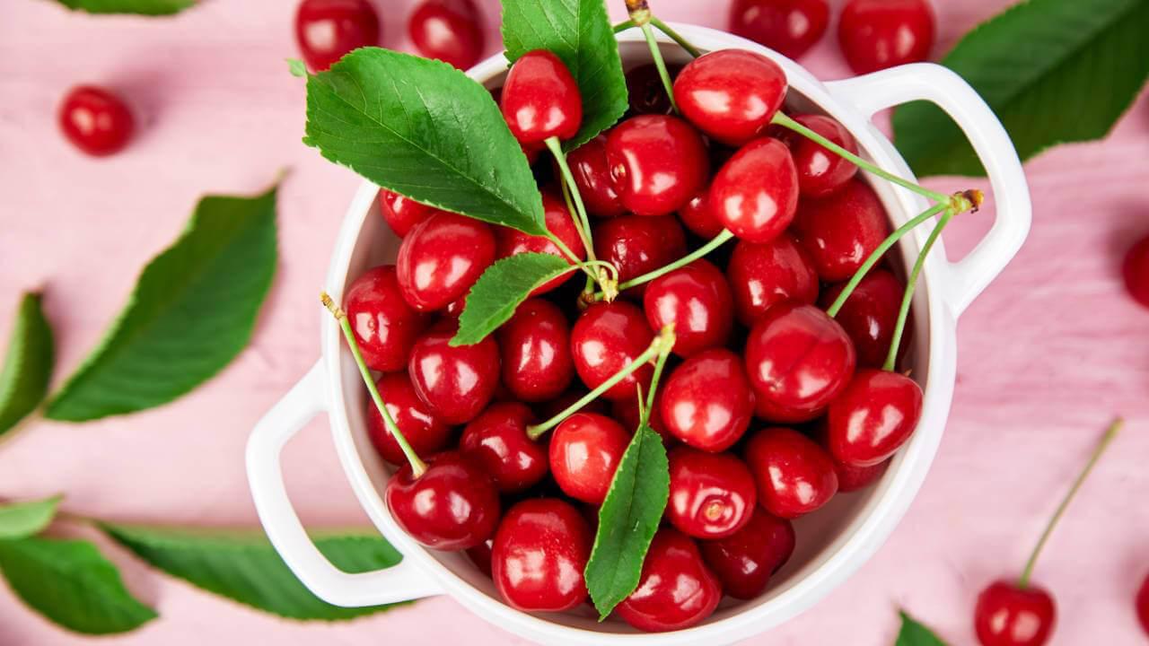 meo-chon-cherry-tuoi-ngon
