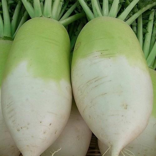 Củ cải trắng Hàn Quốc 500gr